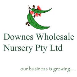 Downes Wholesale Nursery